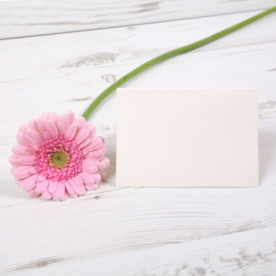 Any Design Menu Place Card