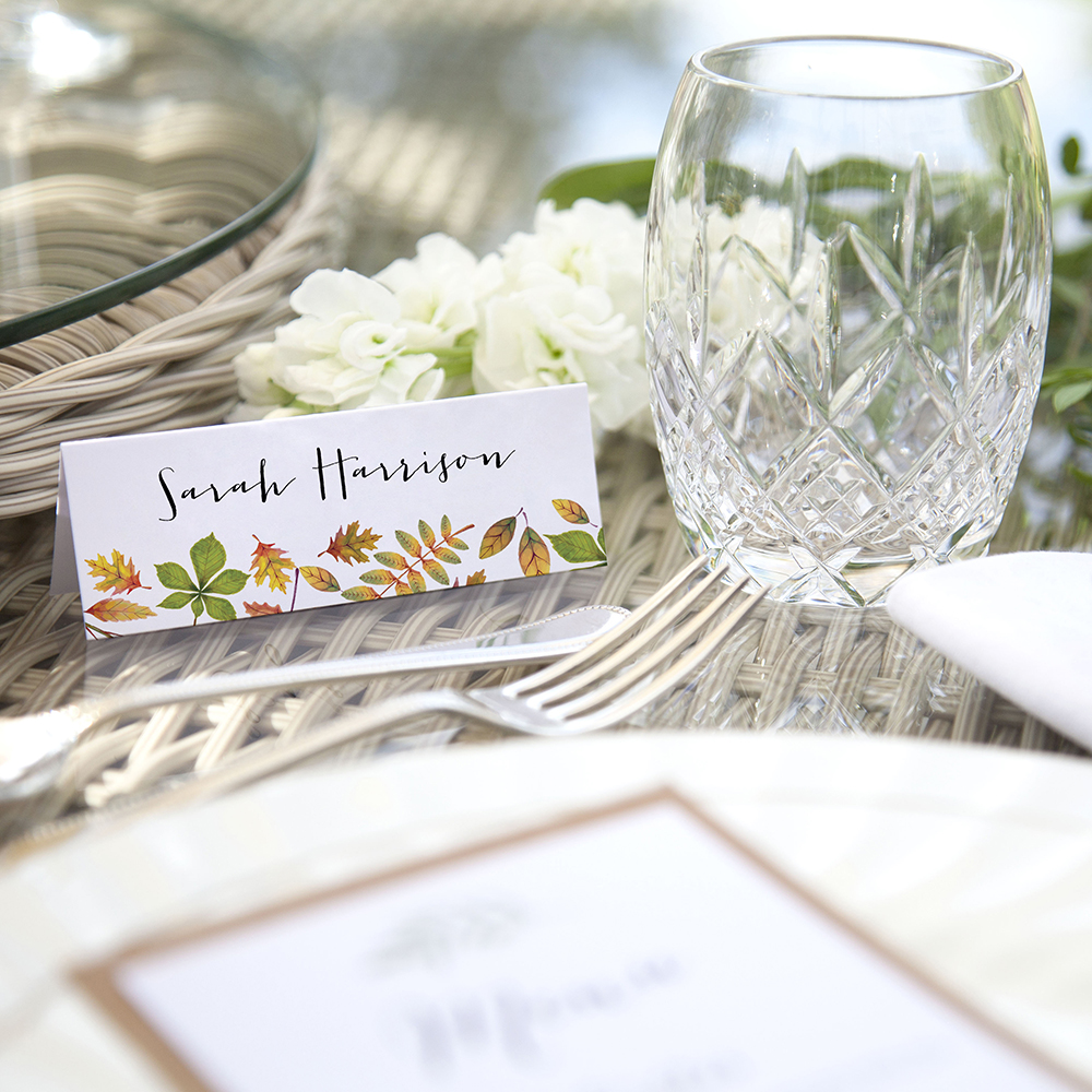 'Dorothy' Place Card Sample