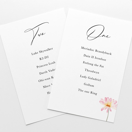 'Daisy Pink' Table Plan Card Sample